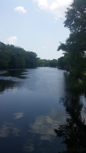 P blog river