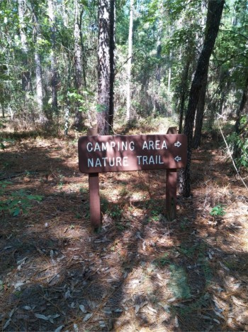 beaver-trail